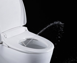 toilet bidet squirting water